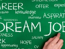 Executive Job Search Tips