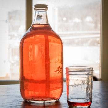 Make Rhubarb Wine with the Duluth Folk School