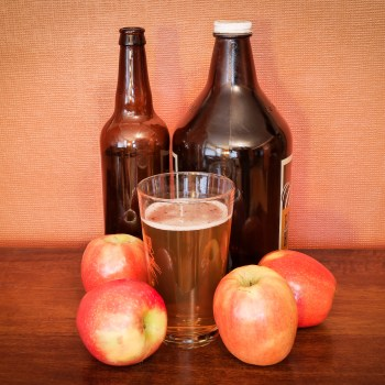 Brew Your Own Hard Cider with the Duluth Folk School