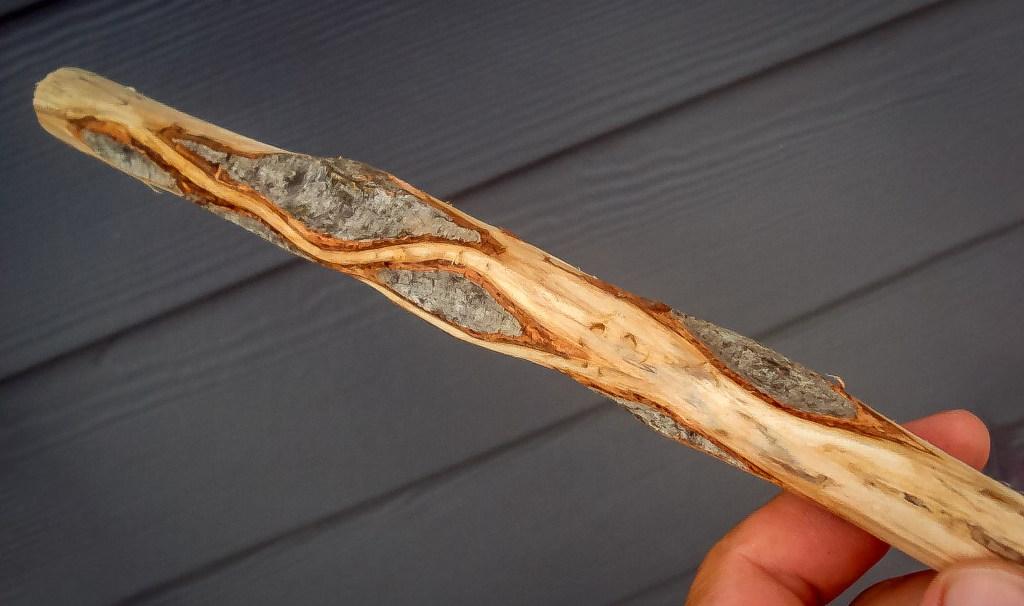Diamond Willow Stick