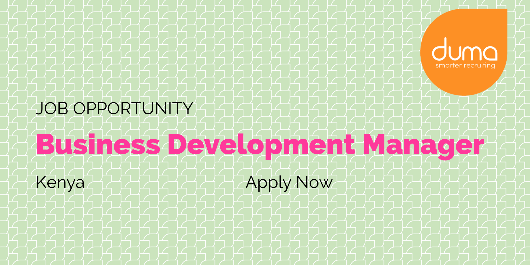 Job Vacancy Business Development Manager