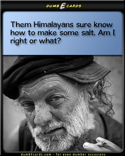 Himalayan Salt For Even Dumber Occasions