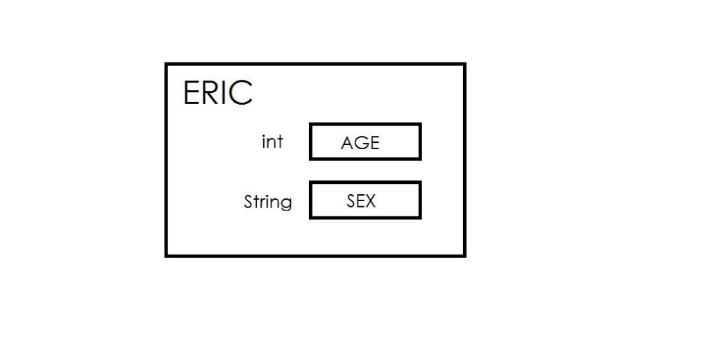 eric class and its fields age and sex