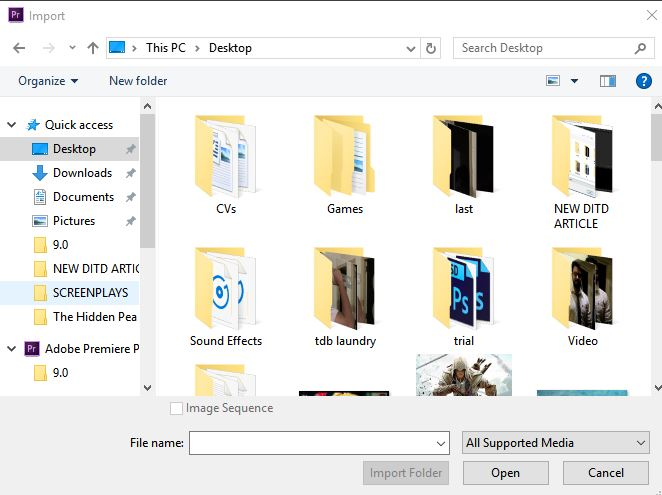 import dialog box option in premiere pro