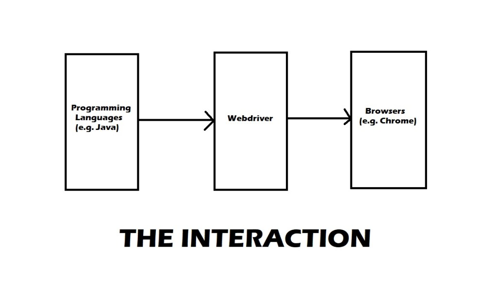interaction with selenium webdrivers