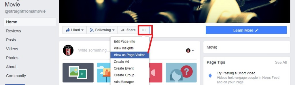 view as page visitor option on facebook page