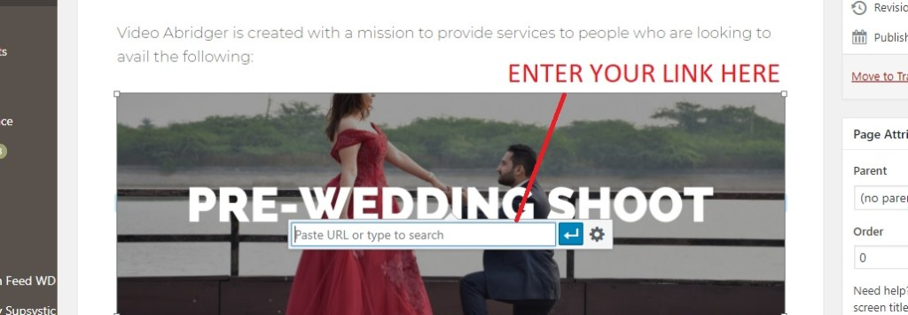 url entering option on image in wordpress