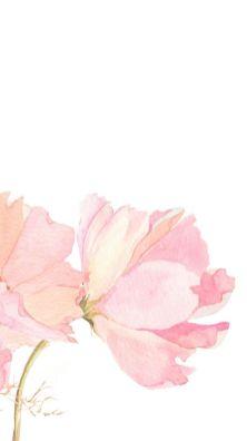 Flower art whatsapp wallpaper