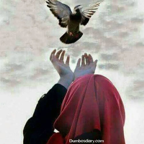 Muslim girl with pigeon