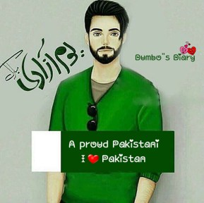 Pakistan Day dp for boys