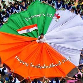 Indian Flag DP