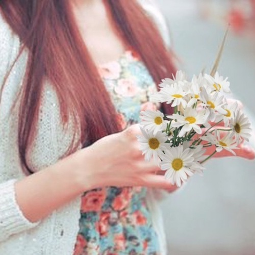 Girl With Daisy Flowers In Hand