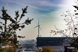 Windenergie aus Hamburg