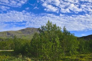South of Sandhagen, Norland County, Norway