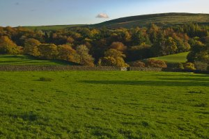 Autumn at Storiths, Bolton Abbey, Craven, North Yorkshire