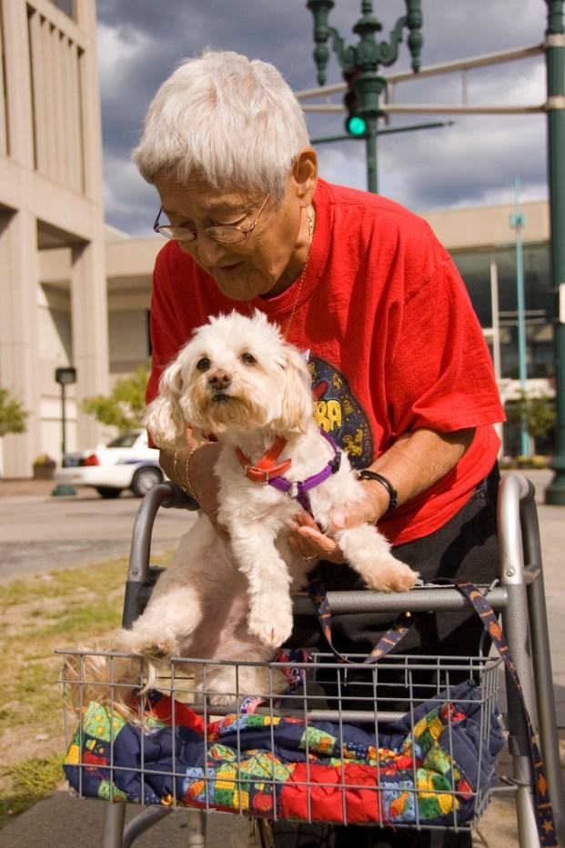Lady With Dog - Wearing a Amoeba Records Shirt!