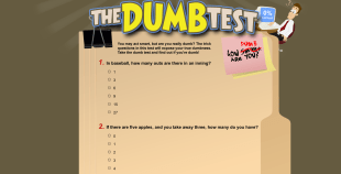 The Dumb Test Website