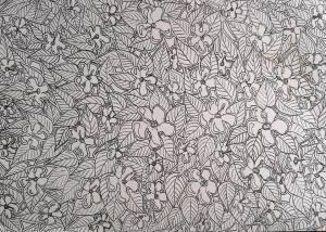 Hibiscus Symi