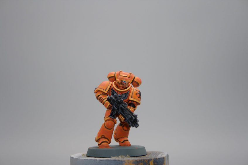 Space Marine - Knights of Gryphonne 1