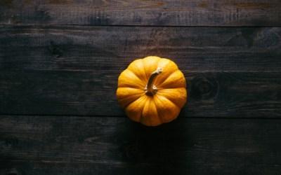 Autumn Appreciation