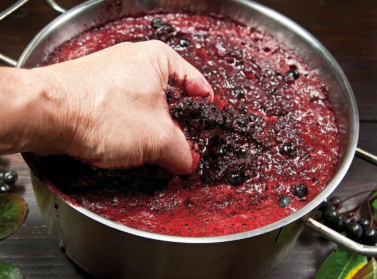 измельчение ягод черноплодной рябины