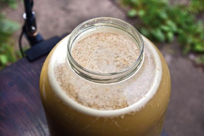 брожение яблочного сока после отжимания и удаления мезги