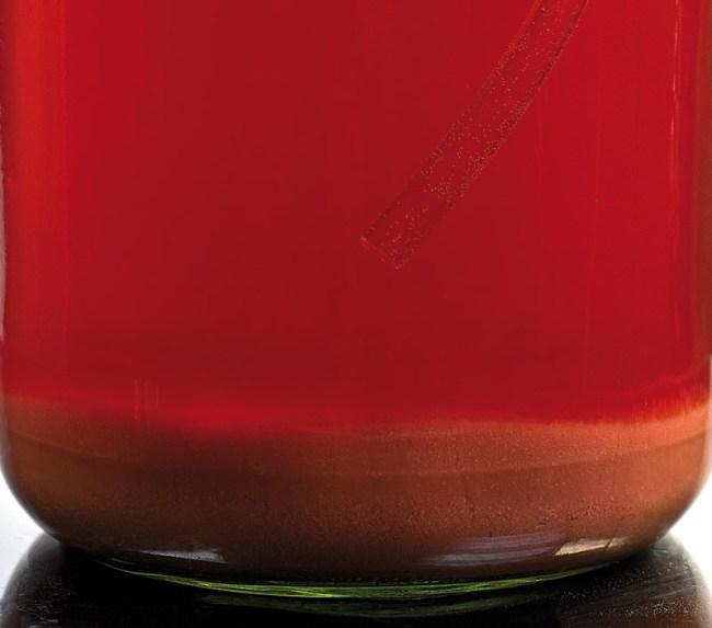осадочные массы в забродившем клубничном соке