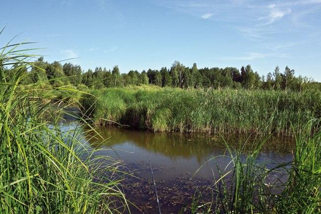 река Малая Сестра