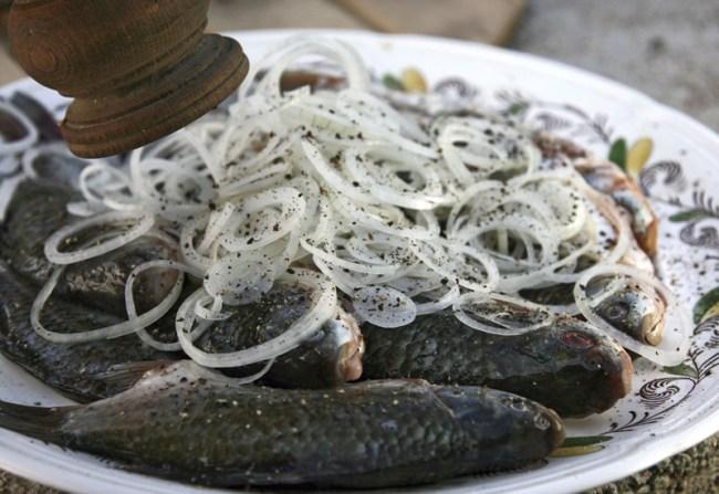 подготовка карасей к маринованию:добавление соли, перца и сахара