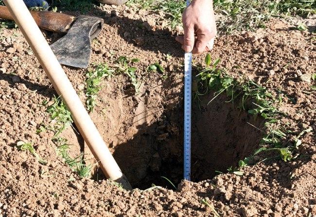 измерение глубины тандыра для мяса, приготовленного в тандыре