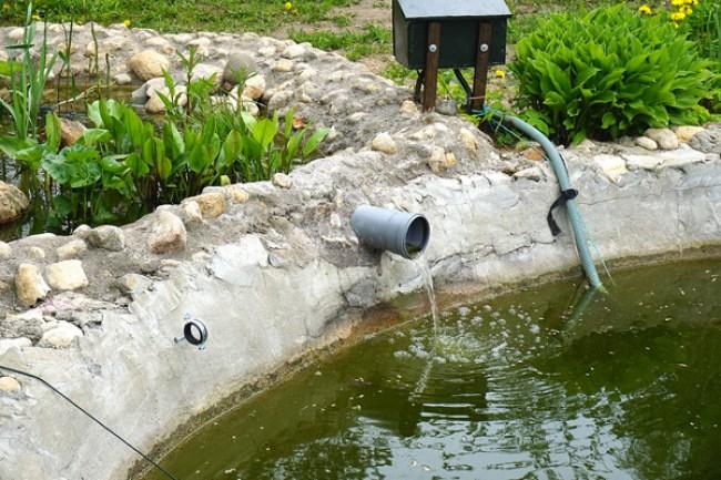 вид на биоплато со стороны пруда