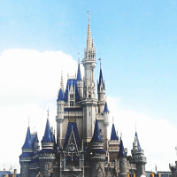 Tips for your first Disney World Florida visit