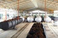 Bangun Pabrik Jagung dan Kilang CPO, Cargill Tambah Investasi US$ 350 Juta