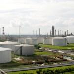 Makin Prospektif, Produksi Biohidrokarbon dan Industrial Lauric Oil Terus Digenjot