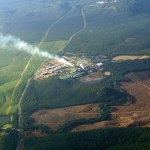 Angin Segar untuk Sektor Perkebunan Sawit, Penyerapan Biodiesel Tetap Tinggi