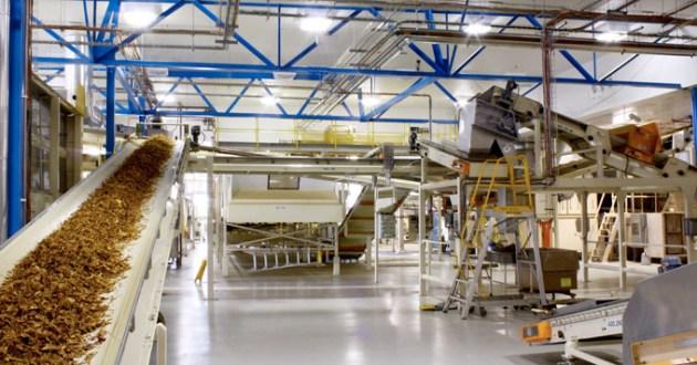 Pekerja Terjangkit Covid-19, HM Sampoerna Hentikan Sementara Pabrik Rungkut 2