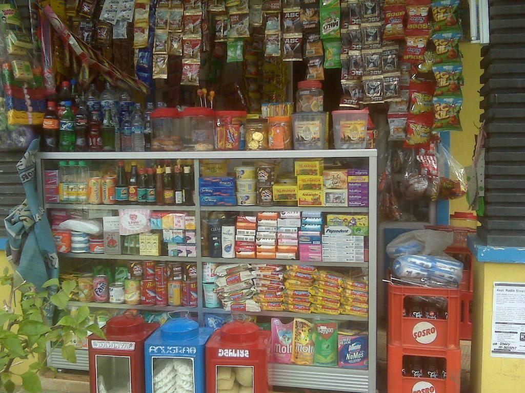 Bisnis Rumahan di Desa: Membuka Warung Sembako