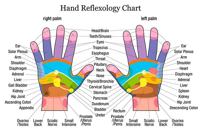 Reflexologia en la mano para adelgazar
