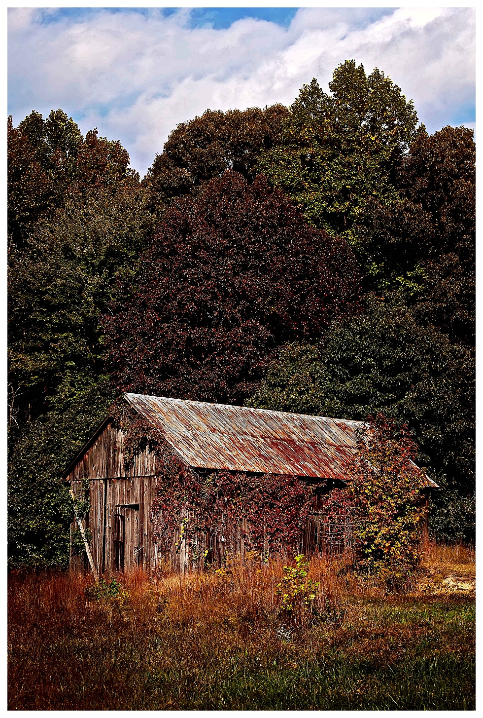 calvert county photographers (11)