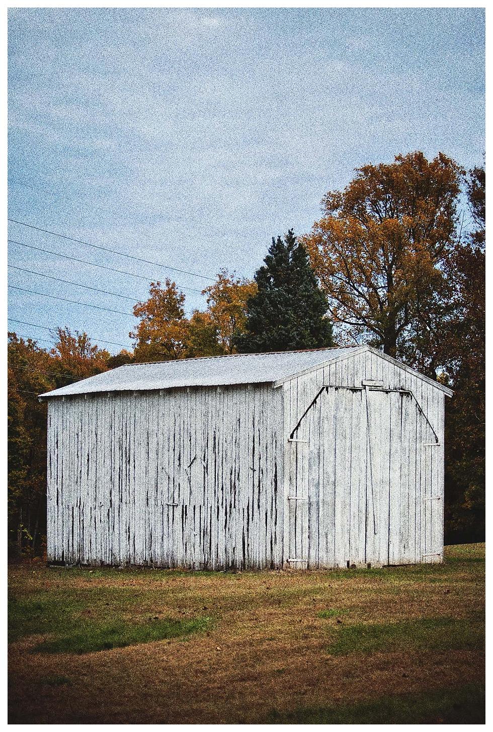 calvert county photography (1)