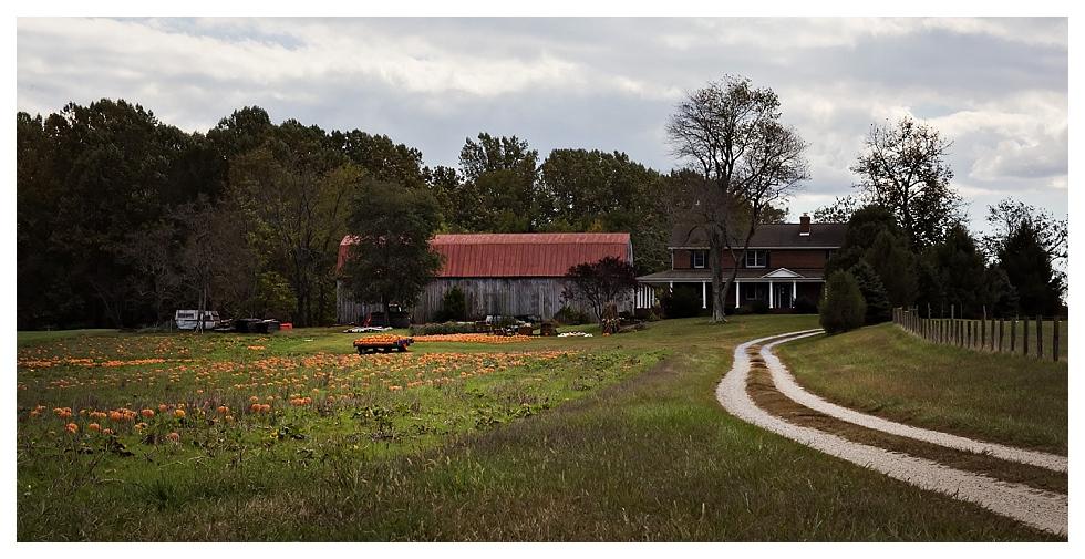 calvert county photos-1