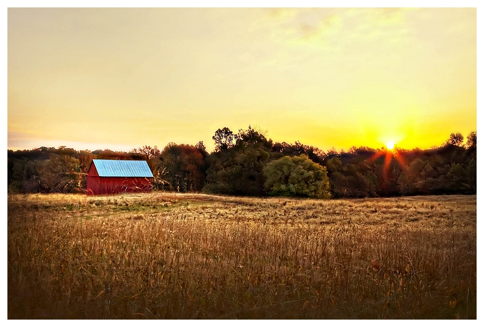 calvert county photos (25)