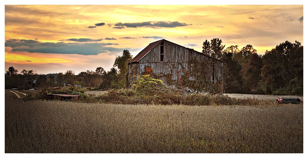 calvert county photos (27)