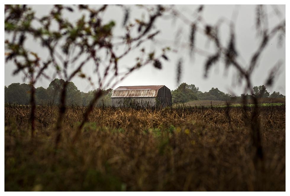 Southern Maryland Photographer (7)