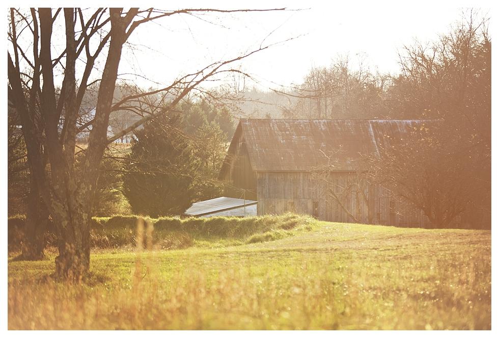 calvert county photographers (1)