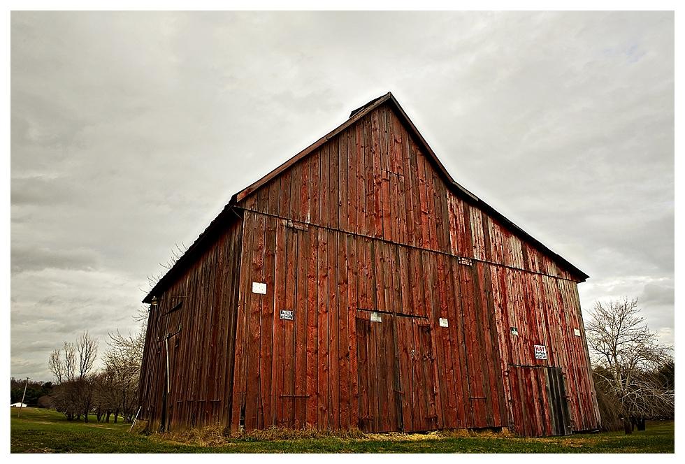 calvert county barns (3)