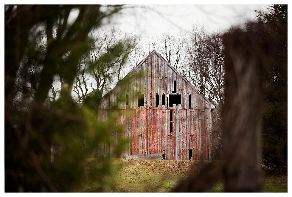 calvert county barns (6)
