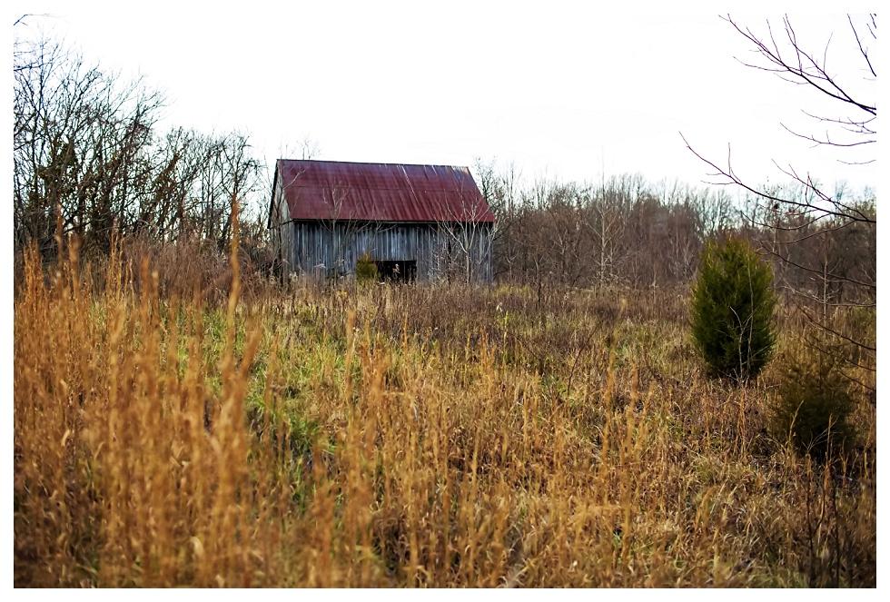 calvert county photos (1)