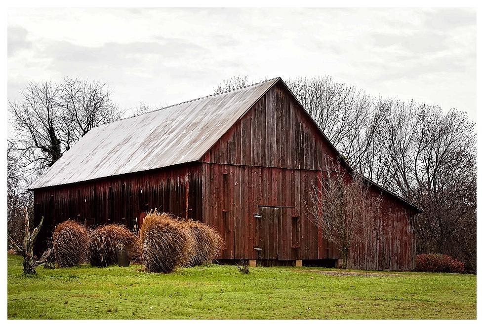 calvert county photos (6)