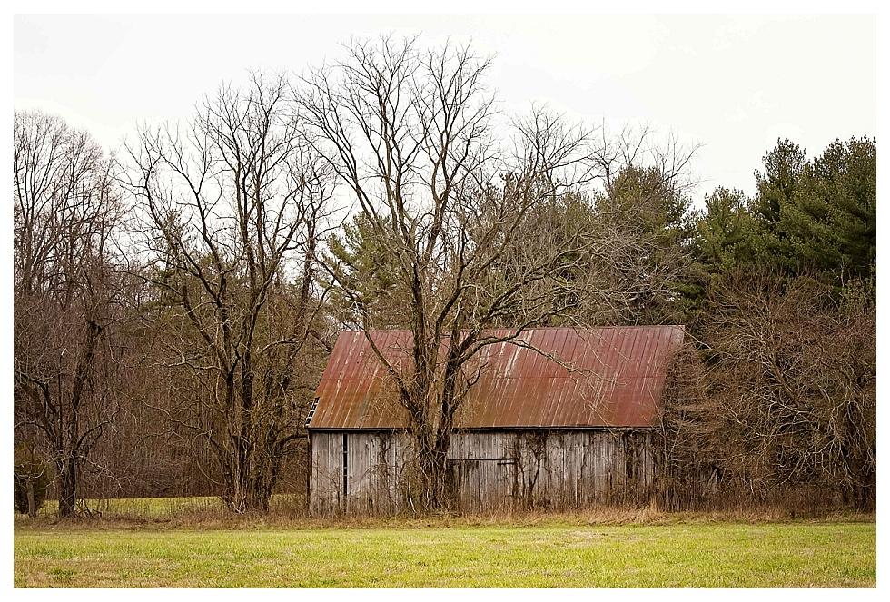 calvert county photos (9)